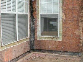 Termite Damage at Building